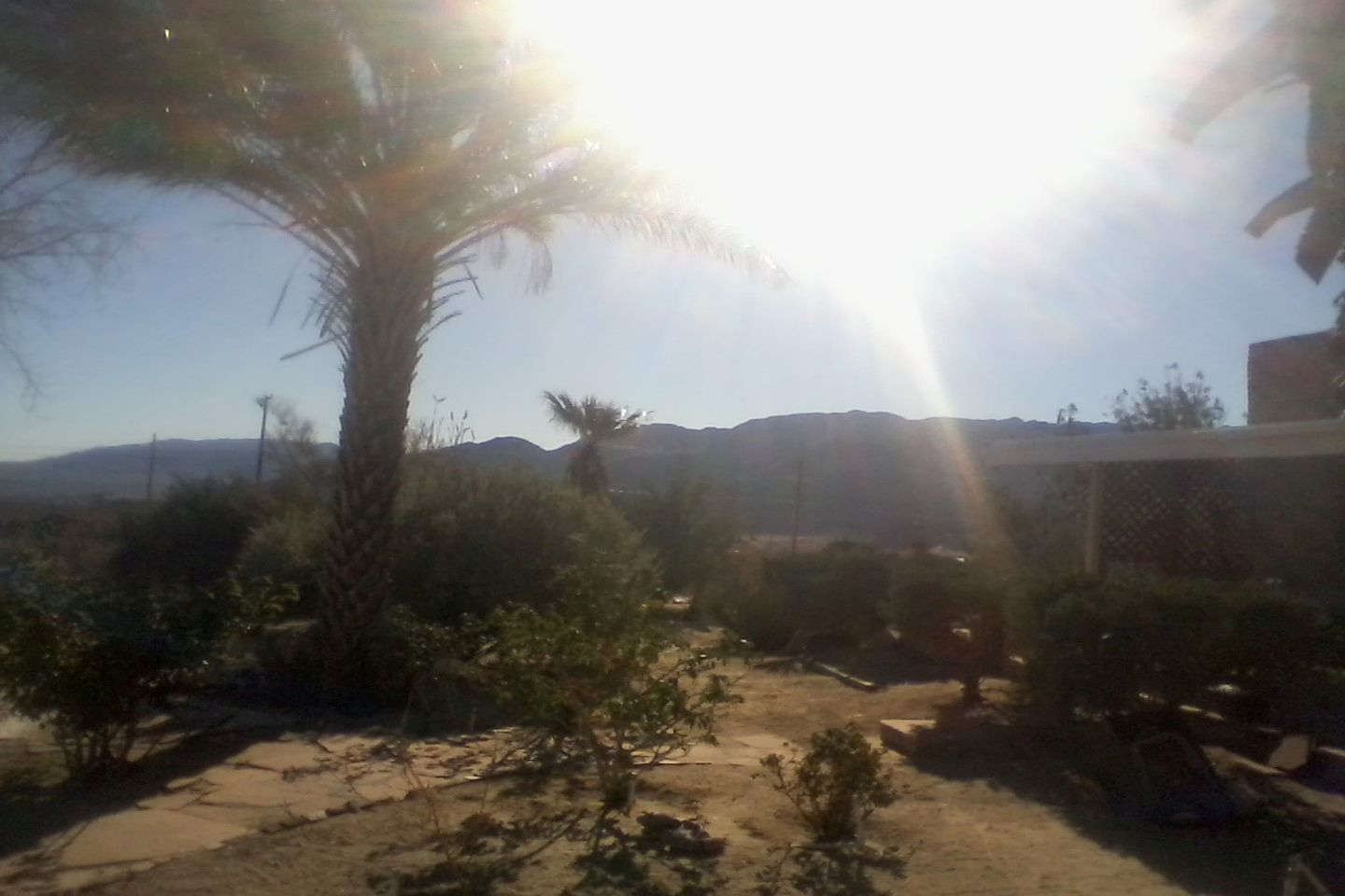 Noel's Knoll in 29 Palms